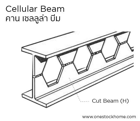 cellular,beam,เซลลูล่าบีม,คานเหล็กรวงผึ้ง,ราคาพิเศษ,